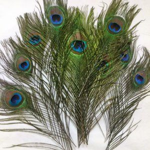 Peacock Feathers set of 10 NWOT